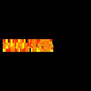 Yunus _ Youth Logo